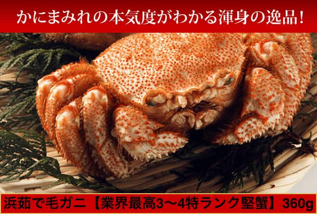 【北海道雄武・稚内産】毛ガニ(3~4特ランク堅蟹)360g