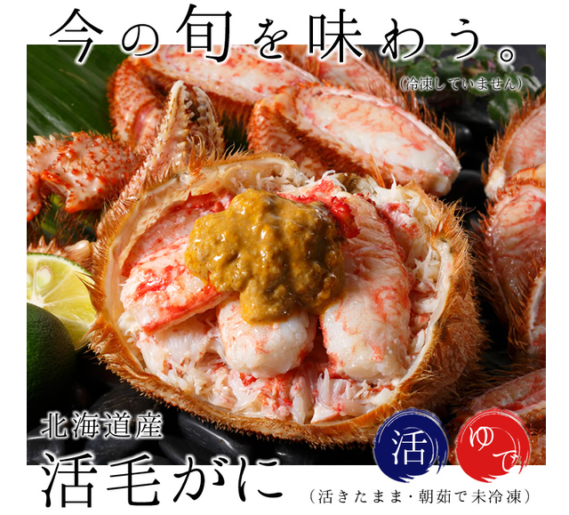 「蟹の匠」厳選!「活」毛ガニ(500g〜1.2kg) ¥7,300〜17,520