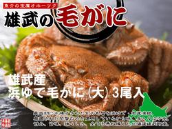 【北海道雄武産】浜茹毛がに姿(大)3杯500g×3