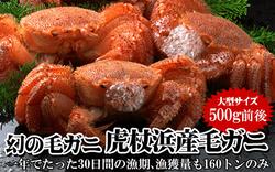 【北海道虎杖浜産】毛ガニ500g前後