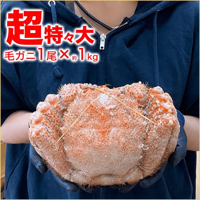 堅毛ガニ(超特大)1kg