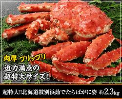 北海道紋別浜茹で たらばがに姿 約2.3kg